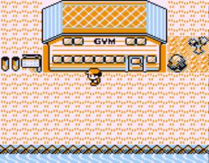Pokemon Red (PL) - screen 1