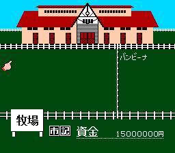 Best Keiba - Derby Stallion (J) - screen 2